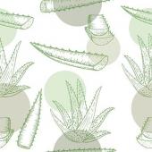 In Aloe we trust!!! ✨💚 Il succo di questa pianta è ricco di proprietà e benefici che puoi trovare comodamente nella bottiglietta di Premium Fruit Aloe ✨✨✅   1  Antinvecchiamento naturale 2 Antibatterico 3 Immunostimolante 4 Riduce le infiammazioni  5 Depura e disintossica 6 Cicatrizzante naturale 7 Aiuta la digestione e l'attività intestinale  •SCONTO -20% (sul prezzo unitario) dall' 11 al 17 GENNAIO  •SPEDIZIONE GRATIS per ordini da 89€  •ACQUISTA 4 CONFEZIONI e RISPARMIA   #premiumfruit #lasaluteènellespremute !!!