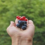 RIBES NERO 🖤 - KO Stress e Malanni Stagionali 👊🏻  Le bacche di Ribes Nero sono ricche di oli essenziali, flavonoidi e glicosidi 💥 che stimolano le ghiandole surrenali a produrre cortisolo ✨ Questa stimolazione di steroidi surrenali ha due effetti benefici: • un' azione antinfiammatoria  • contrasta le situazioni di stress e umore basso 😌 Bevi Premium Fruit Ribes Nero e metti KO stress e malanni stagionali 🆙   #premiumfruit #premiumfruitribesnero #succodifrutta #succhidifrutta #succofrutta #succodiribes #succoribes #spremutedifrutta #spremutadifrutta #succhinaturali #succonaturale  #succosenzazucchero #succhisenzazucchero #spremutasenzazucchero #spremutasenzazuccheri #spremutanaturale #spremutenaturali #ribesnero #antinfiammatorio #saluteebenessere #antistress #antioxidants #antioxidantes  #fruttidibosco #foodphotography #starebene #rimedionaturale #healtylife #bio