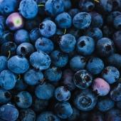 MIRTILLO NERO ▪️-10% di sconto dal 5 all' 11 luglio 🔝  I mirtilli neri sono dei Superfood 💥 Hanno molteplici proprietà benefiche per l'organismo ✨😌 Il succo di queste bacche contenuto in Premium Fruit Mirtillo Nero è infatti un aiuto per la circolazione, ma anche fonte di vitamine A e C, e soprattutto un concentrato di sostanze antiossidanti! 🖤✨   #premiumfruit #premiumfruitmirtillonero  #succodifrutta #succhidifrutta #succofrutta #succodimirtillonero #succomirtillonero #succomelagrana #spremutedifrutta #spremutadifrutta #succhinaturali #succonaturale #succosenzazucchero #succhisenzazucchero #spremutasenzazucchero #spremutasenzazuccheri #spremutanaturale #spremutenaturali #mirtillonero #mirtillineri #antiox #antiossidante #succoantiox #succoantiossidante #microcircolo #healthyfood #juicing #freshjuice #blackberry #blackberries